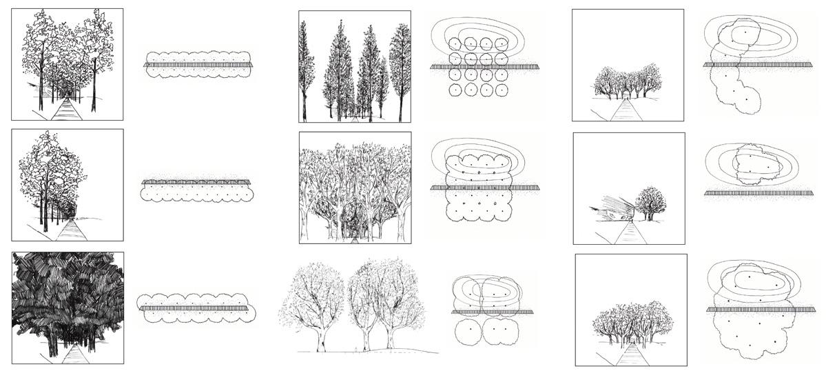 climate-arboreta-tree-arrangements